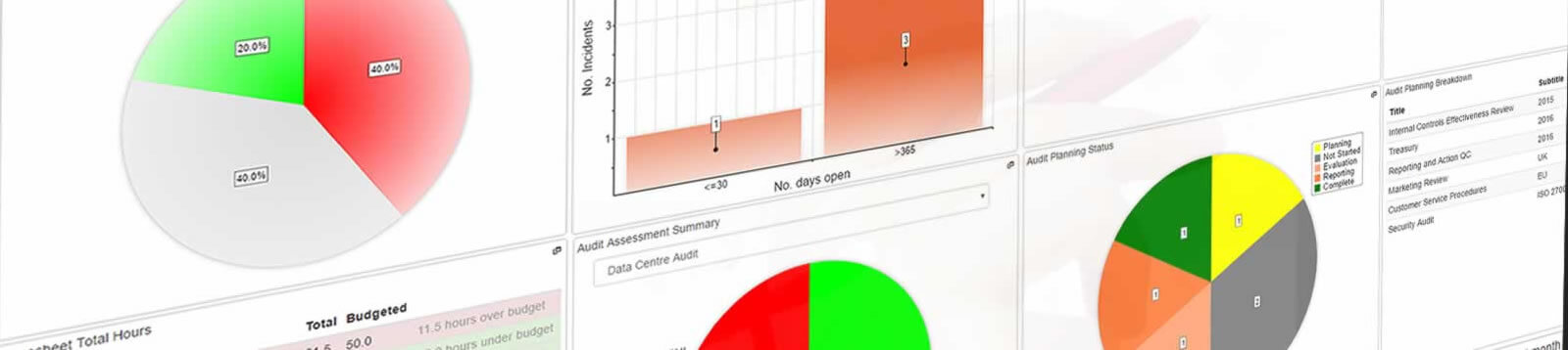 Example Risk and Audit reports